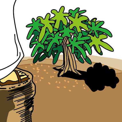 1무화과 나무를 향한 저주(막11)-01.jpg